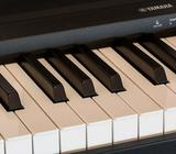 Lear how to play the PIANO