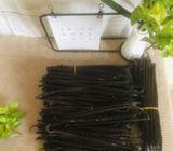 GradeA Madagascar vanilla beans