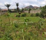 Two Plots Of Land (all Fenced)