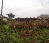 Land For Sale, Badore- Ajah