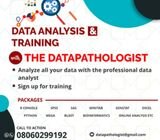 DATA ANALYSIS WITH THE PROFESSIONAL DATA ANALYST